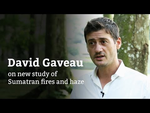 David Gaveau on new haze study