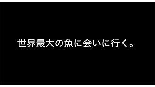 NAKAMO TV   サンセットスタジオTVのナカモトダイスケによる、個人チャ...