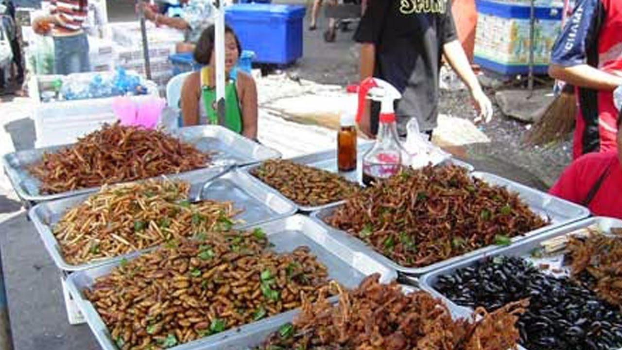 Liat Aja Mo Bikin Muntah 4 Makanan Aneh Dari Thailand Youtube