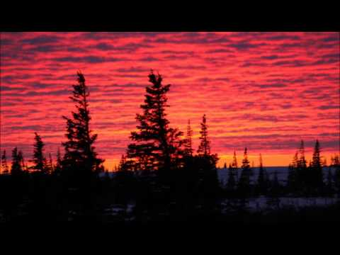 Agalloch - She Painted Fire Across The Skyline pt. 1 mp3
