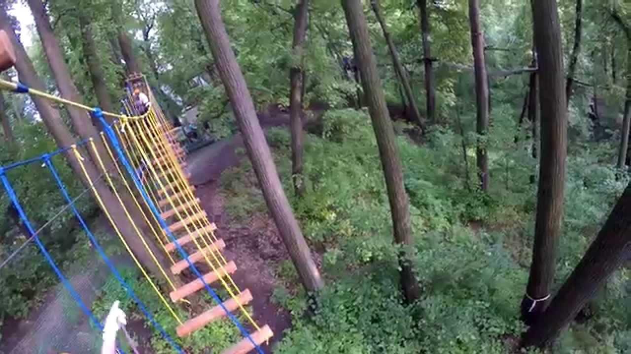 панда парк фили фото