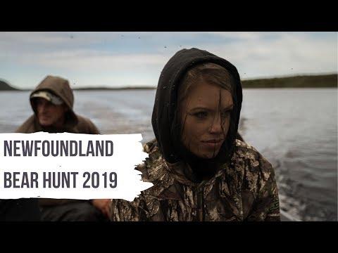 Newfoundland Bear Hunt Recap 2019