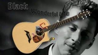 Wonderful Life - Black / Katie Melua - Acoustic Guitar Lesson (easy)
