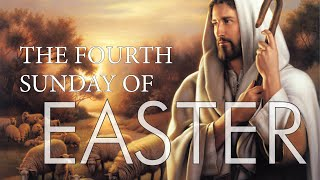 Vid #14 Fourth Sunday of Easter