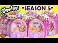 default - Shopkins Season 5 12  Pack