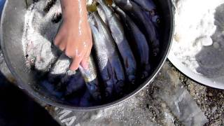 Солим корюшку(наловили достаточно корюшки на засолку Рецепт не сложен)), 2012-01-16T11:27:24.000Z)