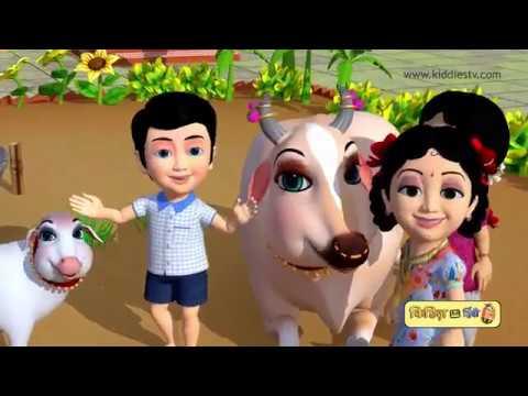 Kiddiestv hindi rhymes