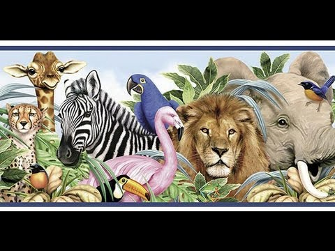 ABC Book for Kids: Alphabet of ZOO ANIMALS for Kids ...