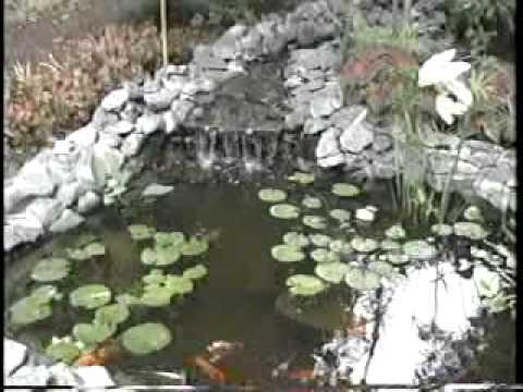 Garden pond basics part a youtube for Koi pond basics