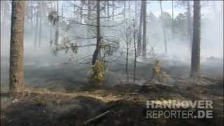 21.07.2010 - Waldbrand an der Autobahn 7 bei Bispingen