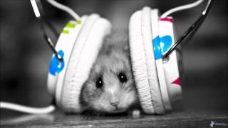 Muzica tare