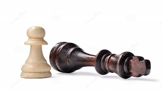 """The word """"Checkmate"""" in chess, come from ?"""