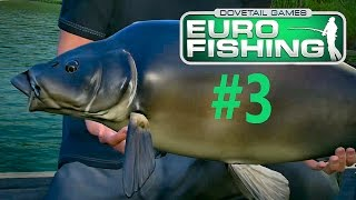 Giants Of The Observatory! | Dovetail Euro Fishing Part 3