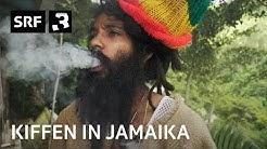 Kiffen in Jamaika: Lukie Wyniger trifft Jah9 und Yaadcore in Kingston (mit Untertiteln)