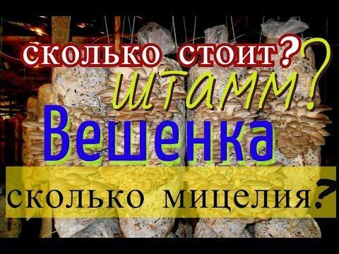 мицелии грибов почтой по украине