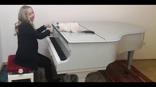 Josepf Haydn - Piano Sonata E Flat Major Hob. XVI:52 No. 62