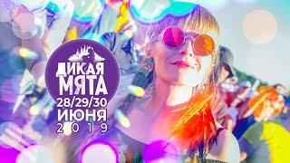 Дикая Мята 2019 / 28-29-30 июня, Тульская область, пос. Бунырево, 6+