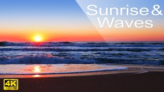 Download 4k Sunrise on the Beach - Relaxing Ocean Waves Sounds and Seagulls - No Music