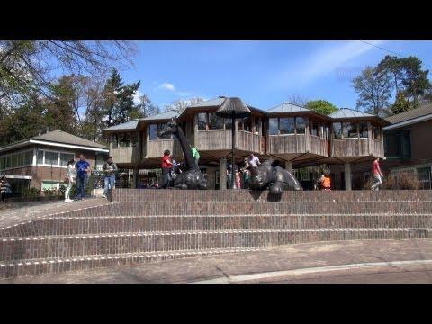 Burgers' Zoo visit in Arnhem / Netherlands HD