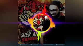 Sher Aaya (Remix) DJ Sameer