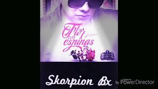 FLOR CON ESPINAS - Melodico ft. Skorpion