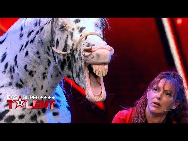 Sensationelle Pferdedressur begeistert die Jury | Das Supertalent 2019 | Sendung vom 14.09.2019