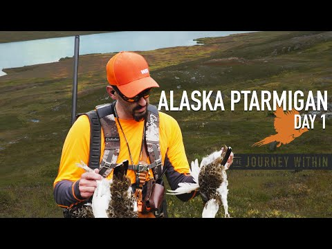 Alaska Ptarmigan Day 1: The Journey Within - A Bird Hunter's Diary | Mark V Peterson