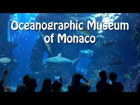 Monaco Oceanographic Museum - Musée océanographique de Monaco