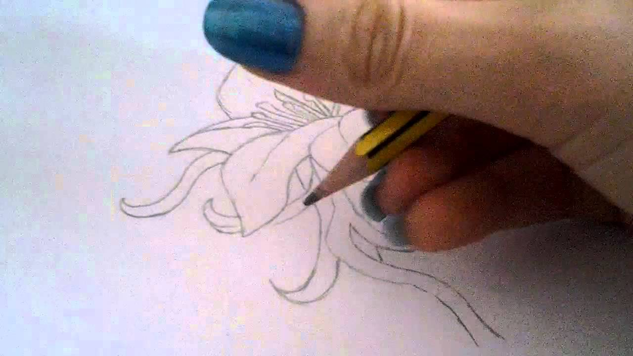 Come Disegnare Un Fiore How To Draw A Flower Youtube