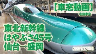 【車窓】東北新幹線 はやぶさ45号 仙台→盛岡(右側車窓)