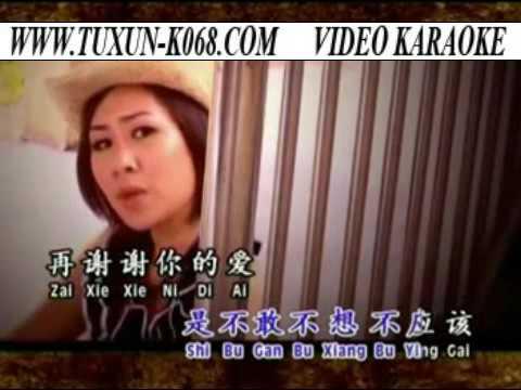 xie xie ni de ai Karaoke Version (谢谢你的爱 KTV 版本 )