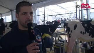 #TE2017 - Préparation des Prim'Holstein