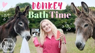 Donkey Bath Time | Spring Clean | AD | This Esme