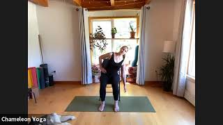 Chair Yoga, June 24th 2021