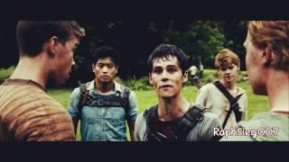 the maze runner » crack video #3
