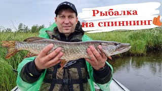 Супер рыбалка на щуку и окуня Ух и прёт Рыбалка на спиннинг ЩУКА НА КАЖДЫЙ ЗАБРОС