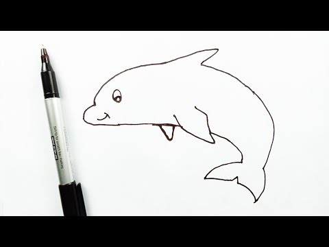 How to Draw a Dolphin Step by Step | Draw a Dolphin for Beginners & Kids Easily