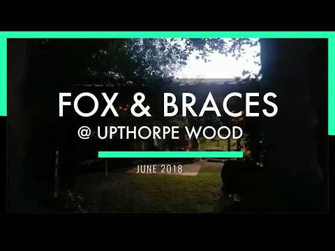 Fox and Braces @ Upthorpe Wood Wedding Venue, Suffolk- June 2018