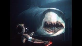 The Shark Scale: Deep Blue Sea (1999 Movie)