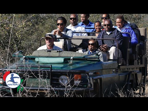 Top Best Safari Destination In Africa YouTube - 10 best safaris in africa
