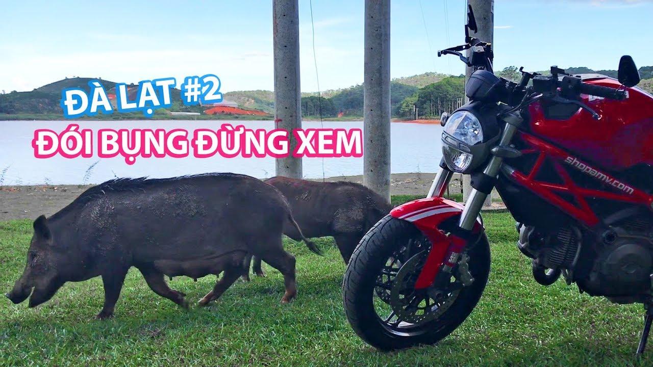 Đói bụng đừng xem vlog này | Tour Đà Lạt cùng Ducati Monster