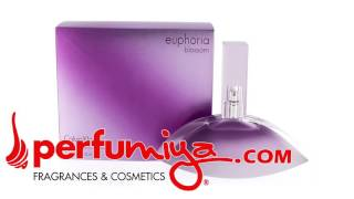 Euphoria Blossom for women by Calvin Klein from Perfumiya