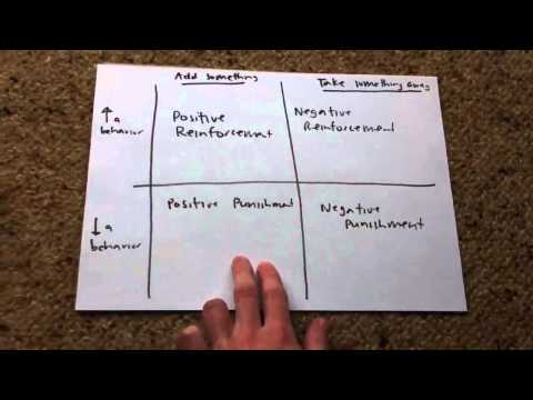 Basic Principles of Behavior Modification