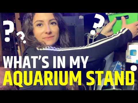 WHAT'S IN MY REEF AQUARIUM STAND? All Of The Products I Use!