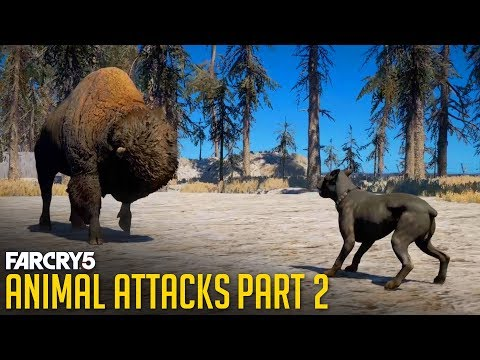 FAR CRY 5 - All Animal Attacks on Dogs (Animal Attacks Part 2) Animals VS Dogs