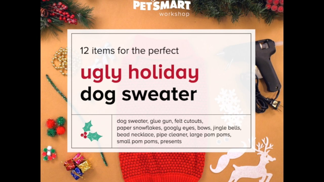 Petsmart Christmas Eve Hours.Petsmart Workshop Diy Ugly Christmas Sweater For Dogs