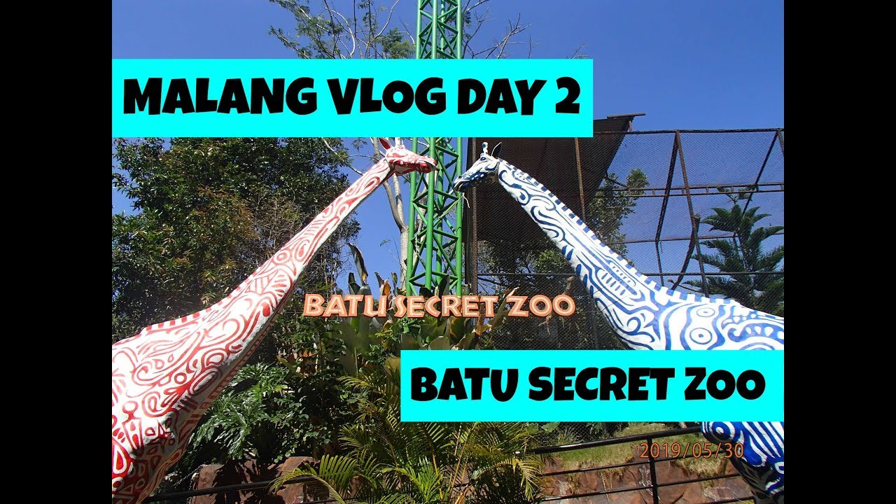 Pindah Hotel Malang Day 2 Reupload Batu Secret Zoo Malang Explorejava Youtube
