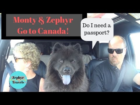 Crossing The Border In To Canada With Dogs | ZEPHYR TRAVELS - RV Lifestyle Video