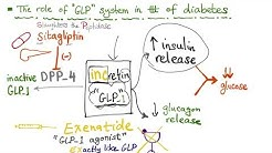 hqdefault - Glp 1 And Diabetes