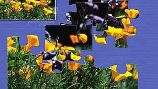 Super Jigsaw Flowers